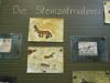 Weißt du etwas über die Steinzeit?